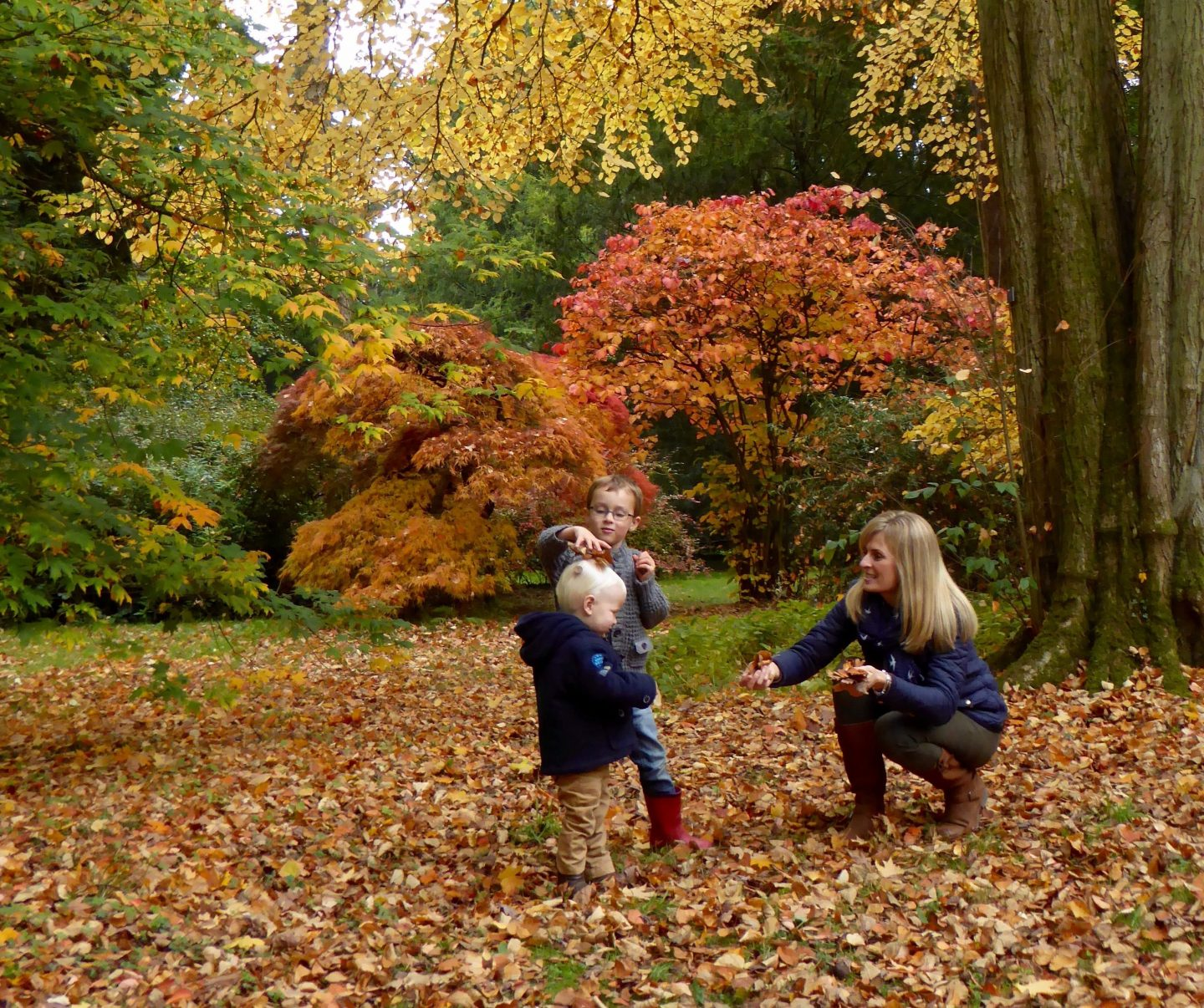 Autumn walk - Autumn outdoor family adventures