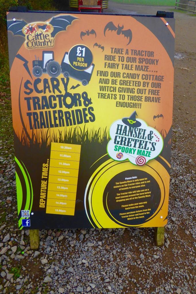 Cattle Country Halloween activities