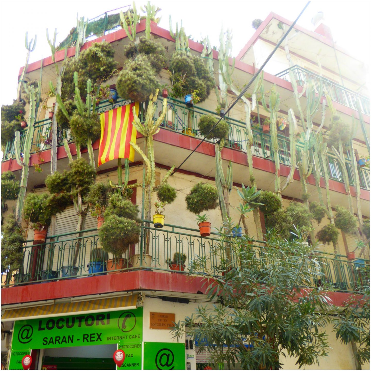 Family attractions near Barcelona Calella Town cactus house