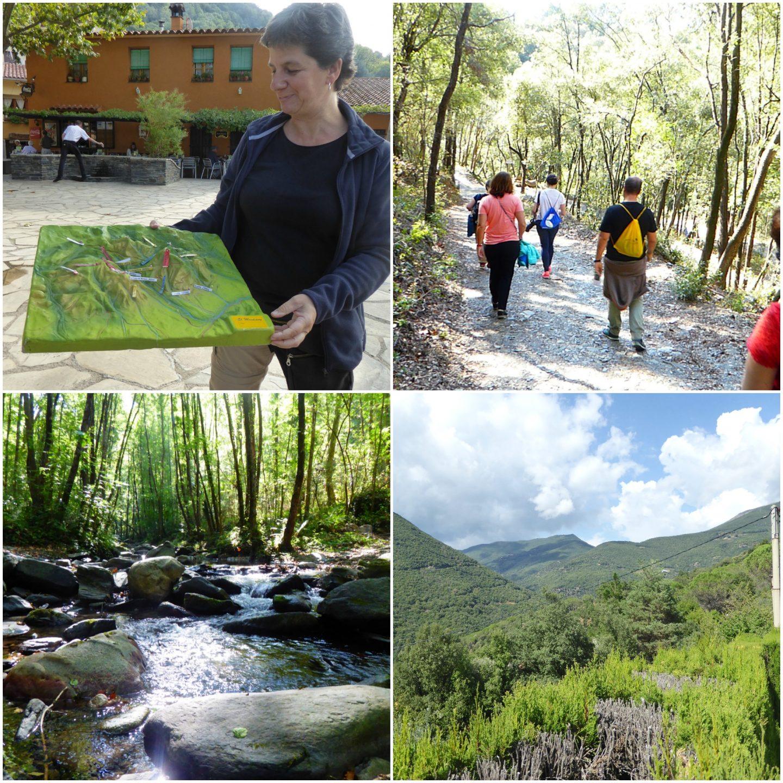 family-attractions-near-barcelona-montseny