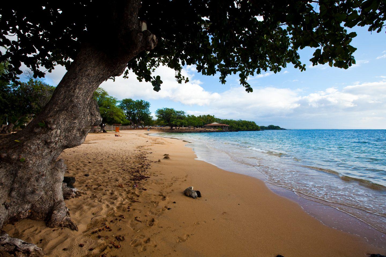 what to do with kids Big Island, Hawaii
