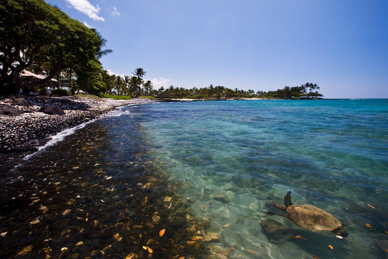 beaches - family holiday to Big Island, Hawaii