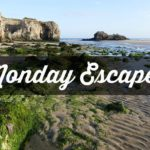 Monday Escapes #52