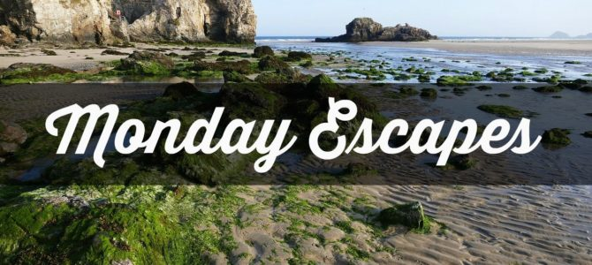 Monday Escapes #60