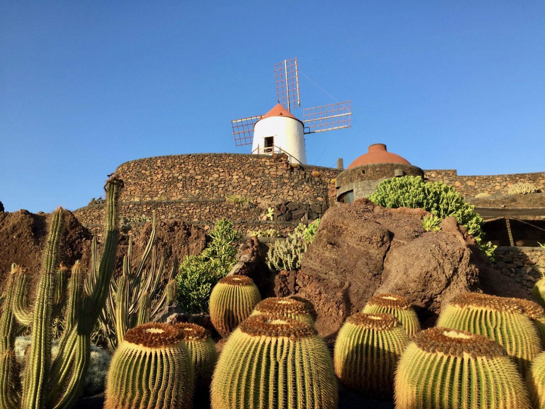 Lanzarote cactus garden - Jardin de Cactus