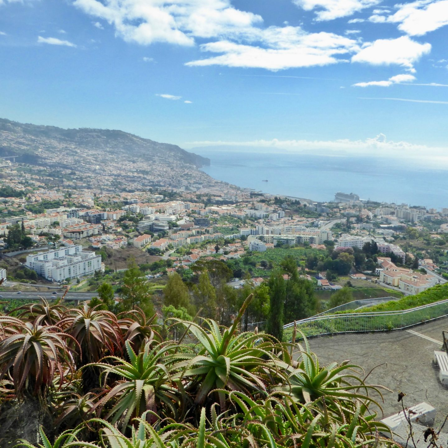 how to make the most of a cruise ship call into Madeira view point