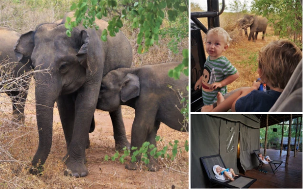 family holiday ideas Sri Lanka