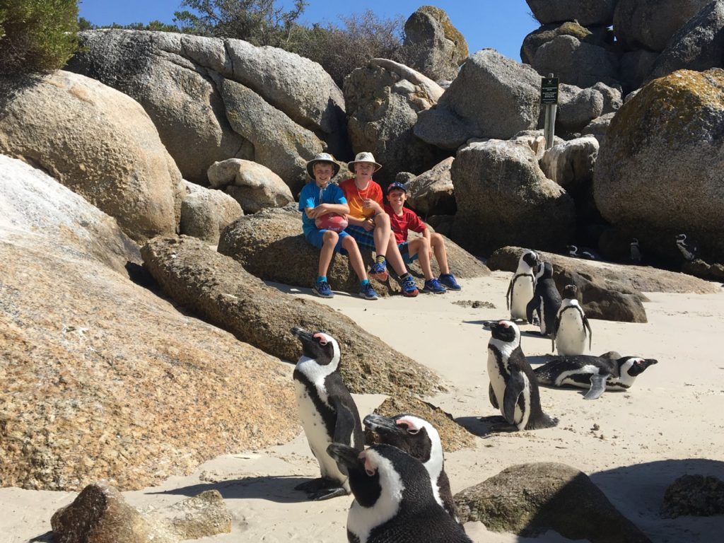family holiday ideas Cape Town